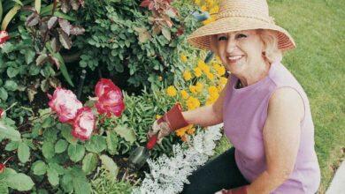 Foto de Mulheres que vivem rodeadas por plantas vivem mais, é o que confirma a ciência