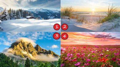 Foto de TESTE: Escolha uma paisagem e saiba suas características