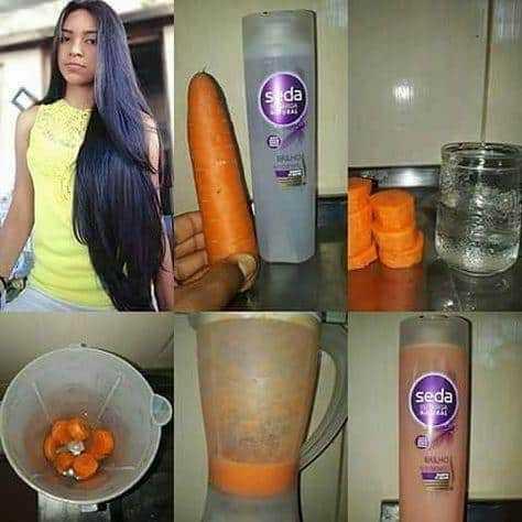 Receita de shampoo de cenoura para brilho e crescimento dos cabelos
