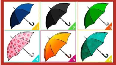 Escolha um guarda-chuva e descubra mais sobre você