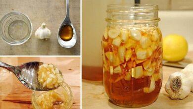 Foto de Aprenda a fazer alho com mel que é maravilha para o sistema imunológico