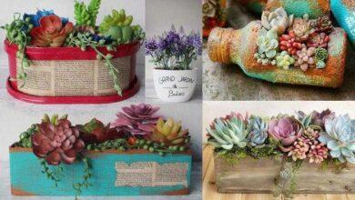 Ideias Lindas de Vasos Reciclados