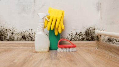 Foto de Maneiras fáceis de prevenir e remover mofo de dentro de casa