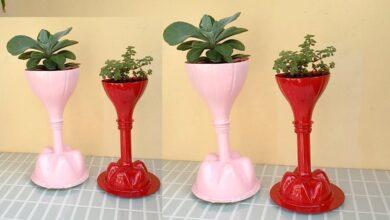 Transformando Garrafas Pet em Vasos