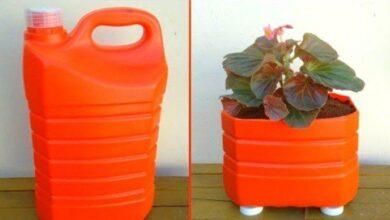 Transforme galão de 5 litros em vaso para flore
